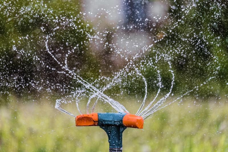 Watering the garden using a rotation sprinkler. Gardening irrigation system close-up. stock photo