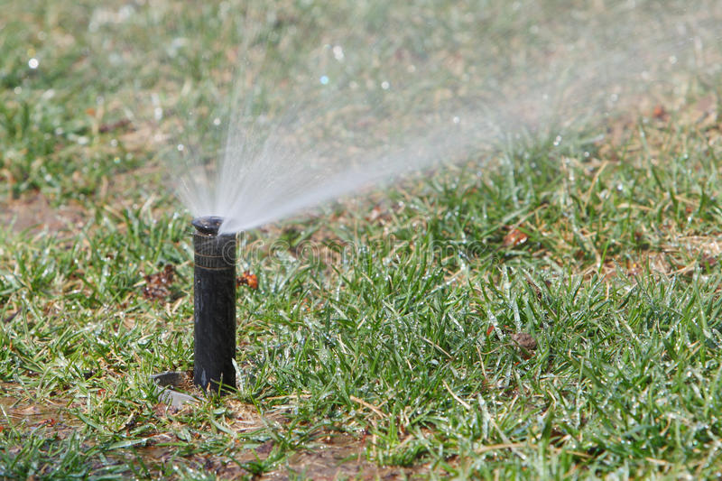 Download Watering lawn in spring stock photo. Image of china, outdoor - 24210790