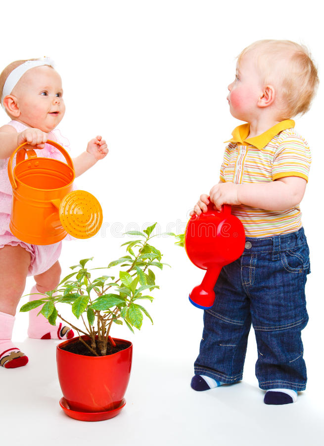 Download Watering a plant stock photo. Image of baby, bright, child - 13056358