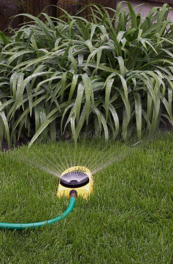 Free Watering Sprinkler II Stock Image - 748021