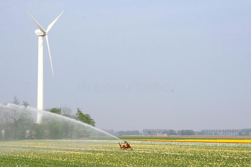 Modern wind turbine delivers renewable alternative energy to sprinkle the Noordoostpolder, Flevoland, Netherlands royalty free stock photography
