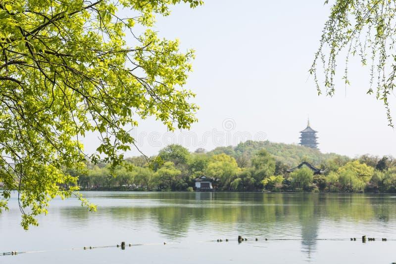 Waterkant groene boom en Pagode van Harmonie Zes royalty-vrije stock foto's
