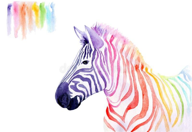 Waterkleurtekening van een dier - regenboogzebra royalty-vrije illustratie