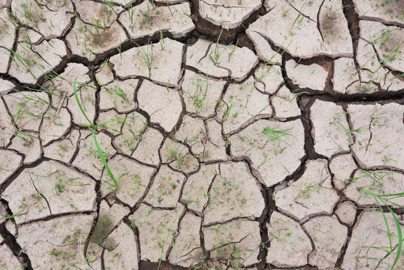 Waterless cracked soil royalty free stock photos