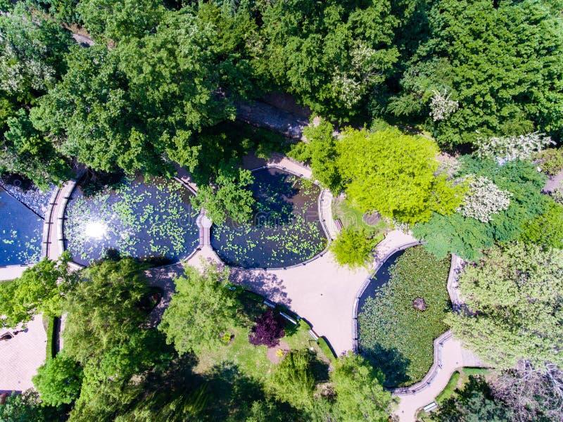 Waterlilies Lake, Felix Baths - Baile Felix, Bihor, Romania Stock ...
