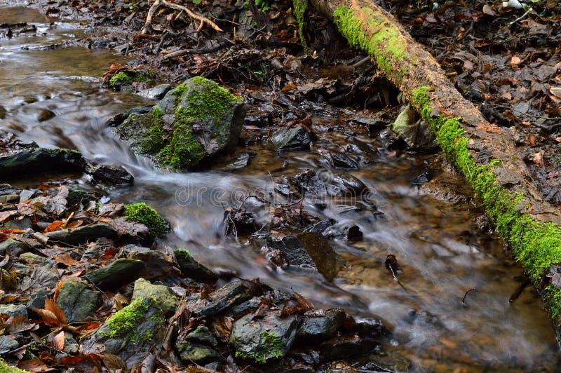 waterloop stock fotografie