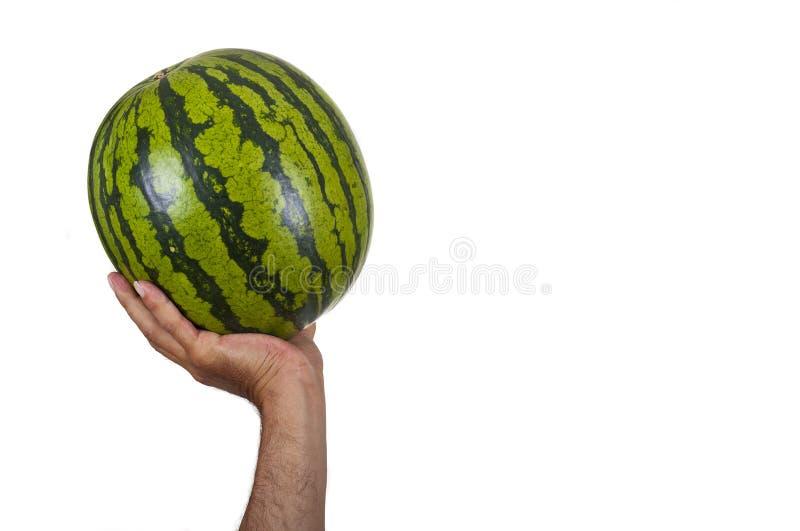 Download Watermeloen stock foto. Afbeelding bestaande uit organisch - 39107252