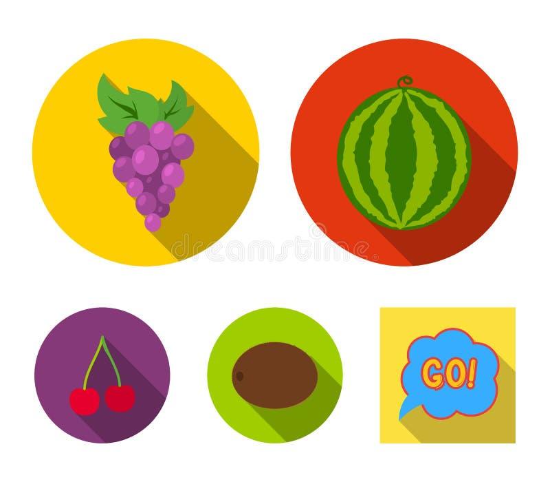 Watermeloen, druiven, kers, kiwi Vruchten geplaatst inzamelingspictogrammen in het vlakke Web van de de voorraadillustratie van h stock illustratie
