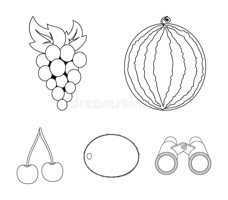 Watermeloen, druiven, kers, kiwi Vruchten geplaatst inzamelingspictogrammen in van de het symboolvoorraad van de overzichtsstijl  royalty-vrije illustratie