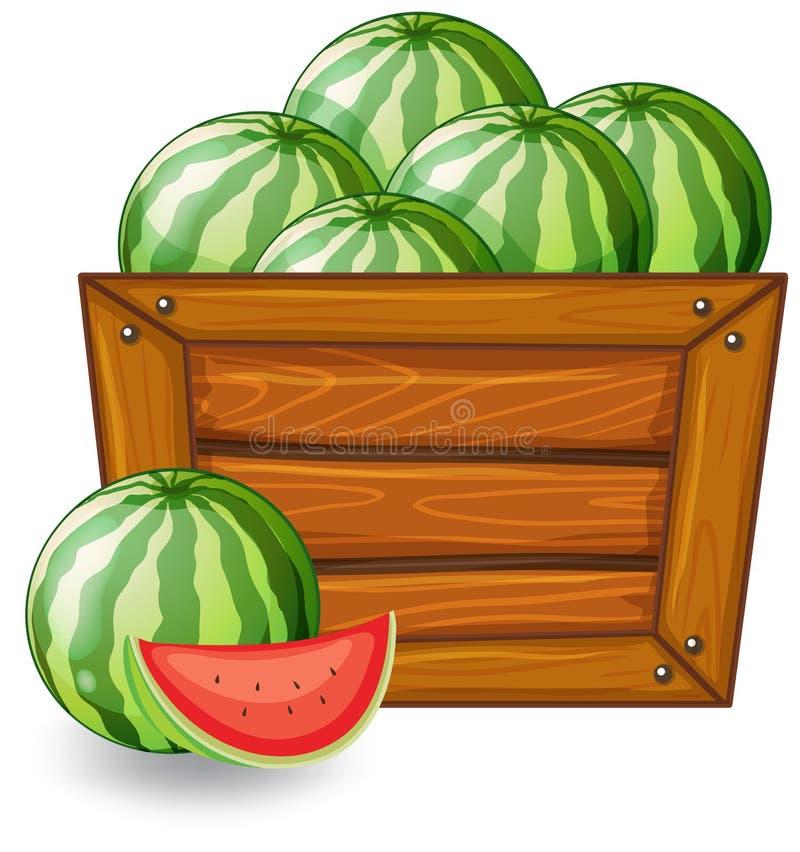 Watermeloen op houten banner stock illustratie