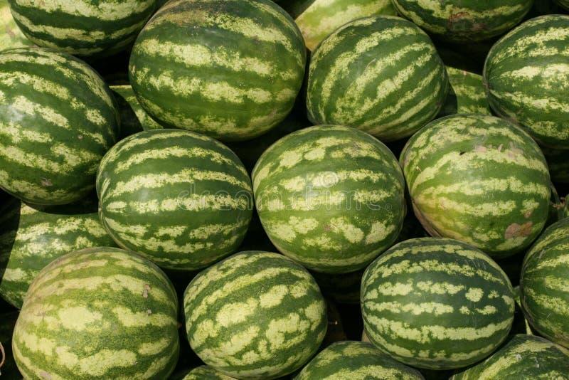Watermeloenen in een markt royalty-vrije stock afbeelding