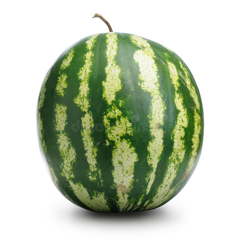Download Watermelon stock photo. Image of nutrition, freshness - 15501644