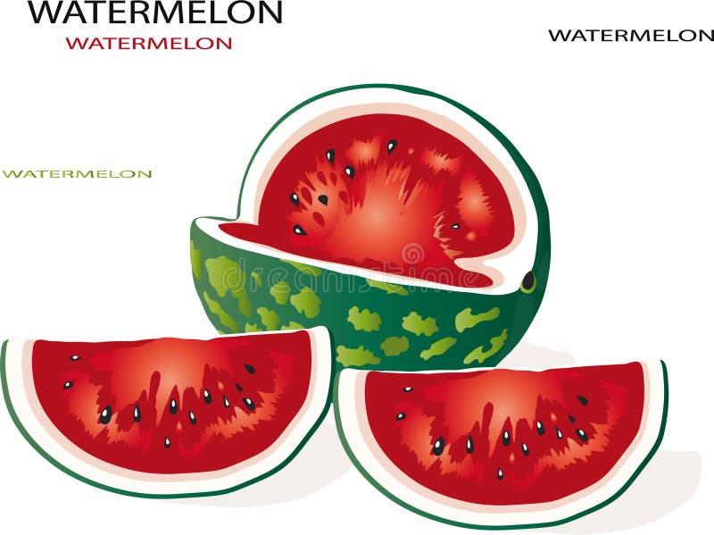 Download Watermelon stock vector. Image of diet, melon, pulp, part - 16277348