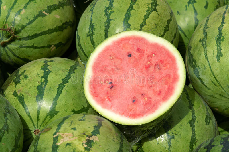 Watermelon. The close-up of dissected watermelon royalty free stock image