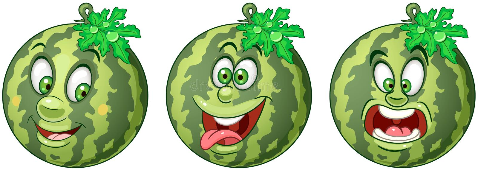 Watermelon. Fruit Food concept royalty free stock photography