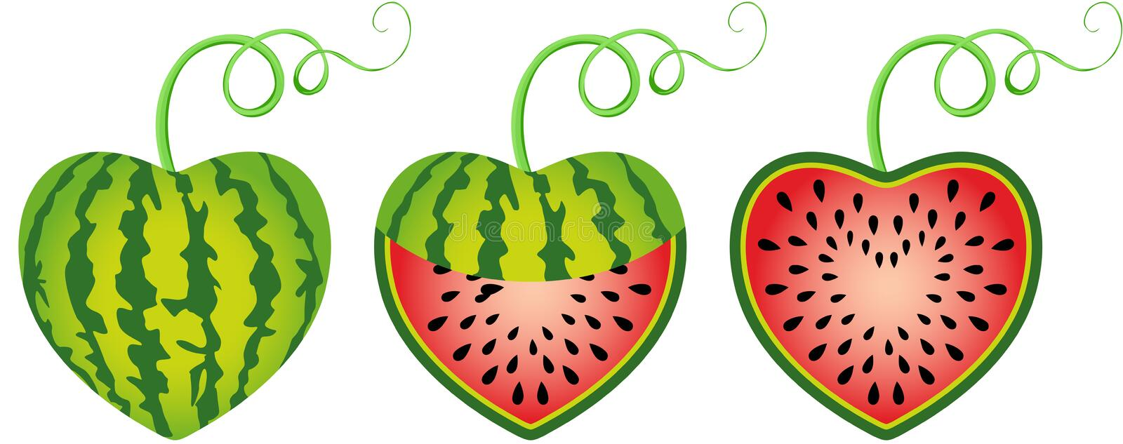Watermelon heart shaped royalty free illustration