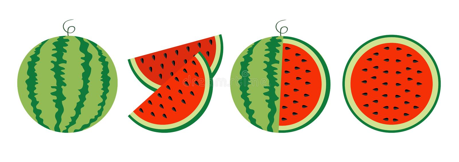 Watermelon icon set line. Whole ripe green stem. Slice cut half seeds. Green Red round fruit berry flesh peel. Natural healthy vector illustration