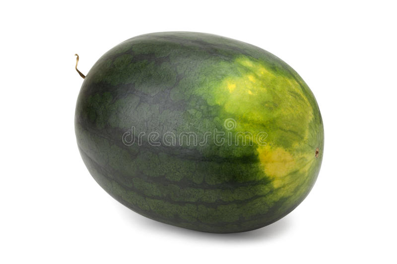Watermelon. Isolated on white background with clipping path and soft shadow stock images
