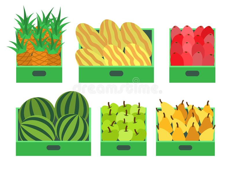 Watermelon and Melon Pineapple Apple Set Vector. Watermelon and melon, pineapple and apple set of fruits placed in containers vector. Pears and beetroots in royalty free illustration