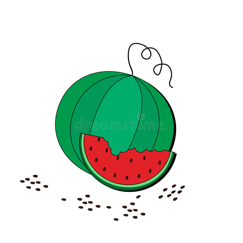 Watermelon and slice illustration. A cartoon watermelon and slice illustration stock illustration