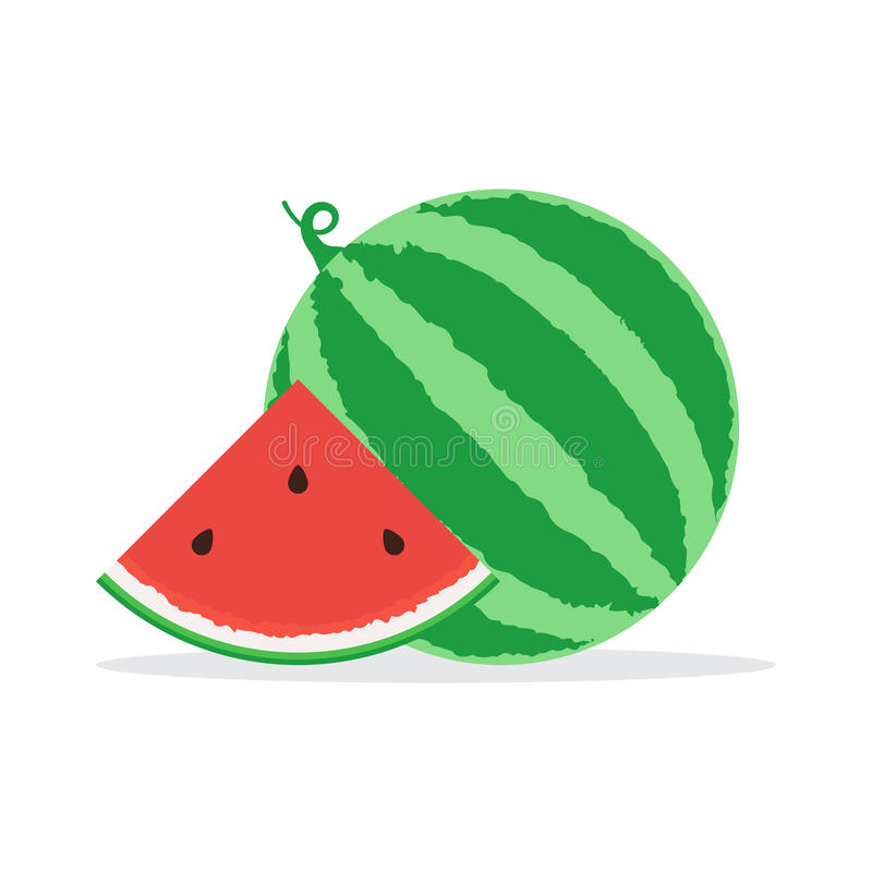 Watermelon and slice. Whole watermelon and slice of watermelon icon. Vector illustration in flat design isolated on white vector illustration