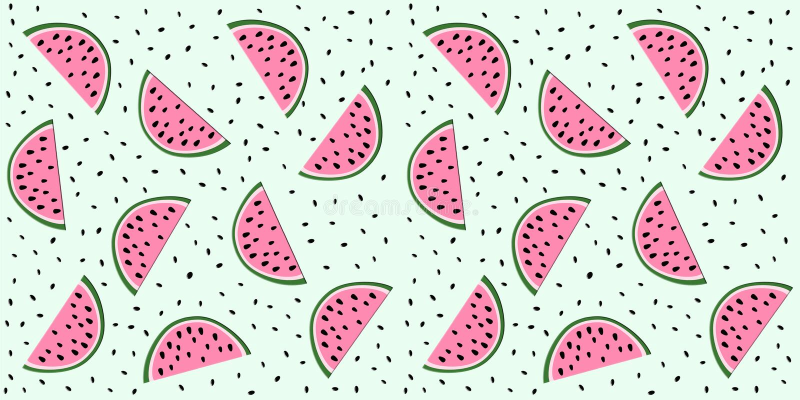 Watermelon Slices stock illustration