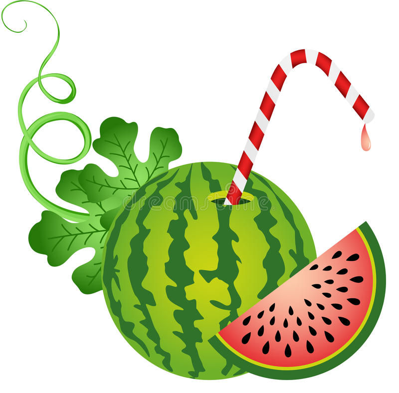 Watermelon with Straw. Scalable vectorial image representing a watermelon with straw, isolated on white royalty free illustration