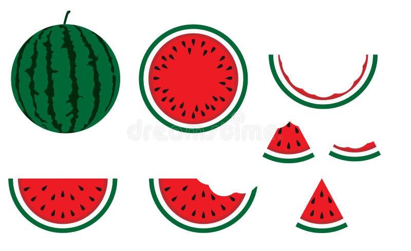 Watermelon tasty vegetarian dessert nature. Natural tropical ripe vector background. Summer fruit delicious nutrion vitamin. Slice royalty free illustration