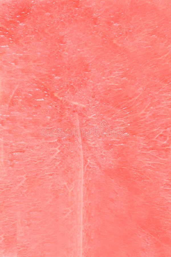 Download Watermelon texture stock photo. Image of close, health - 15444096