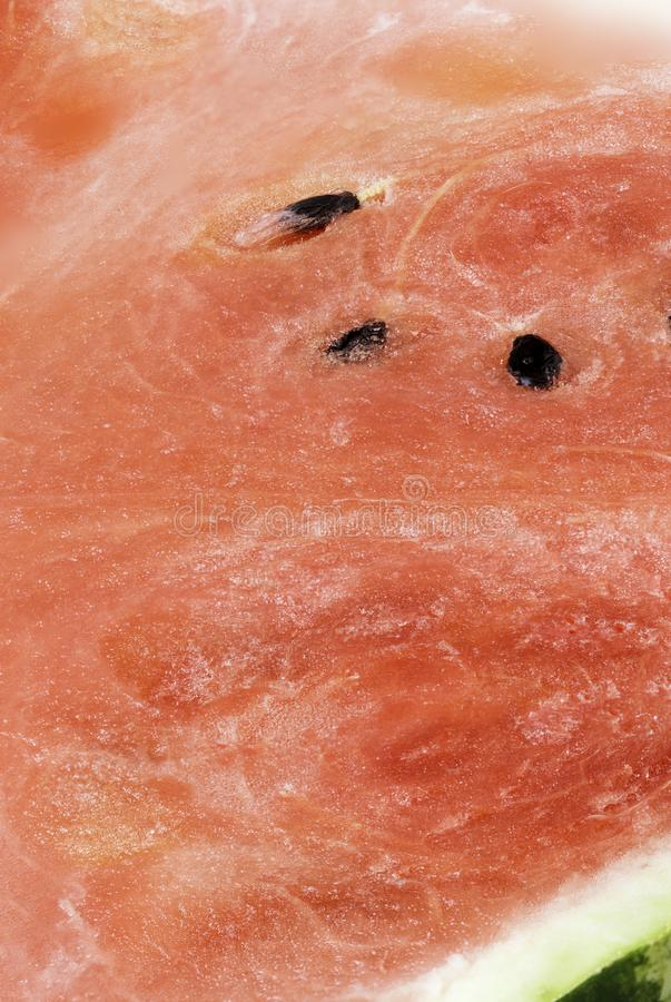 Watermelon texture. Close-up royalty free stock images