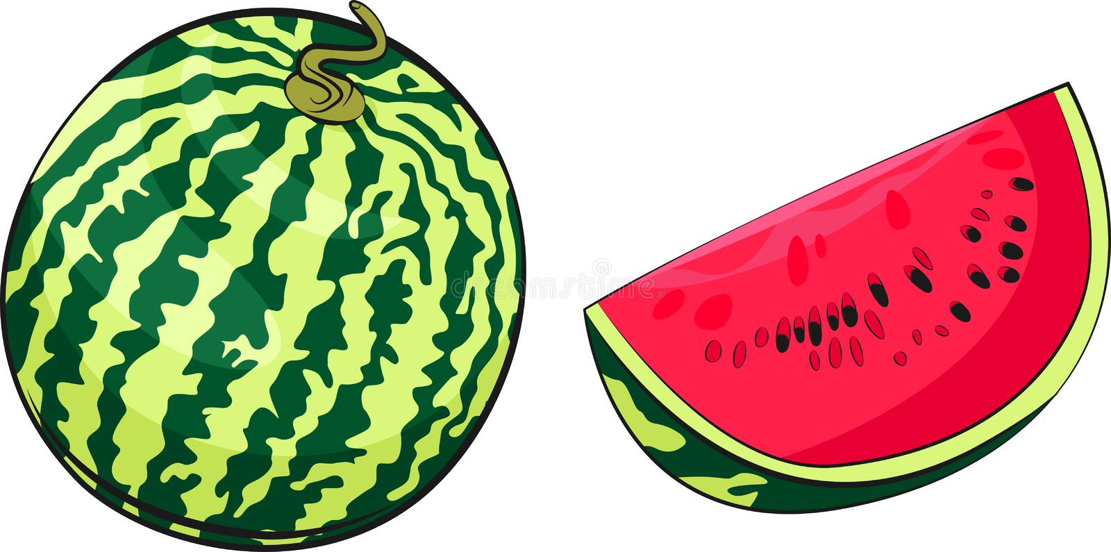 Watermelon vector illustration. Slice of juicy raw watermelon. Food illustration. royalty free stock images