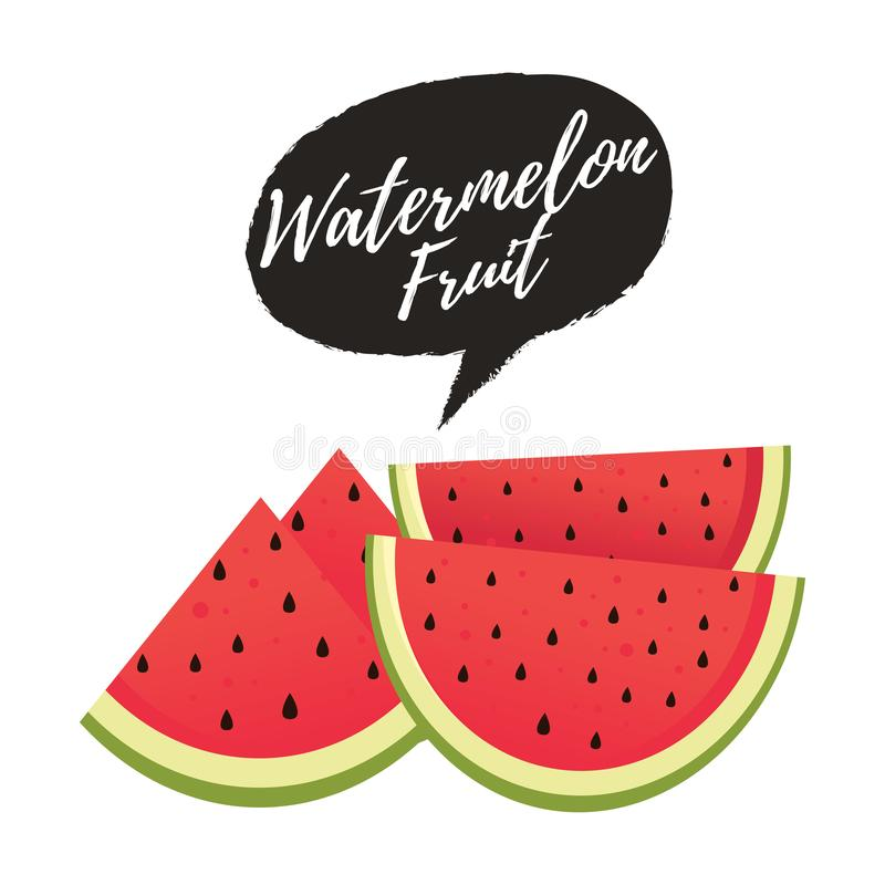 Watermelon vector illustration. Sliced of watermelon isolated on white background. Sliced watermelon fruit royalty free illustration