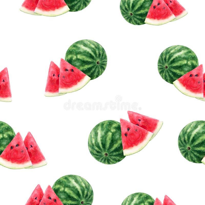 Watermelon hand drawn watercolor illustration. Seamless pattern. Watermelon watercolor pattern. Hand drawn watercolor illustration vector illustration