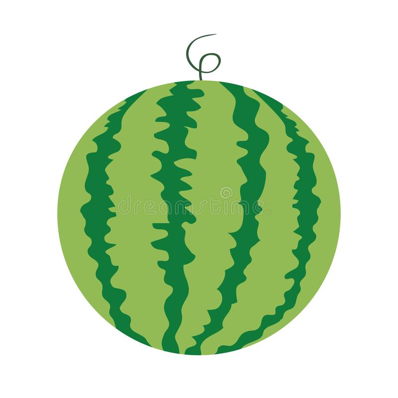 Watermelon whole ripe green stem icon. Green Red round fruit berry with flesh peel. Natural healthy food. Sweet water melon. Tropi royalty free illustration