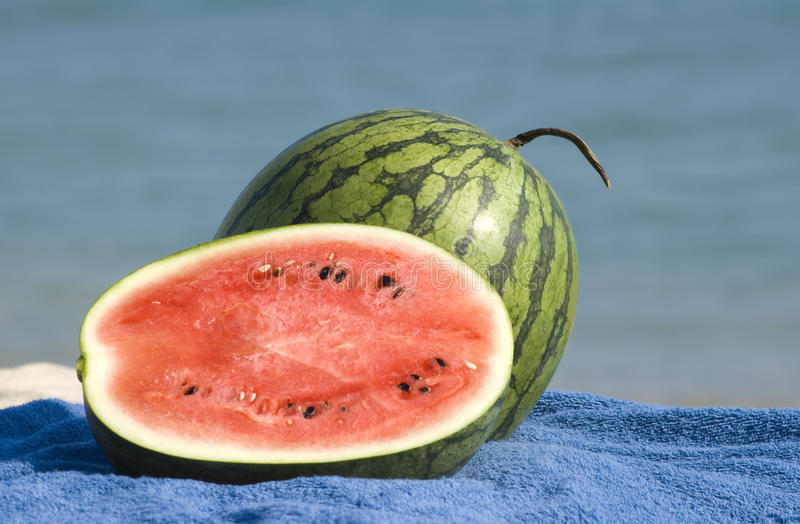 Download Watermelons on a beach stock image. Image of part, beautiful - 15471953
