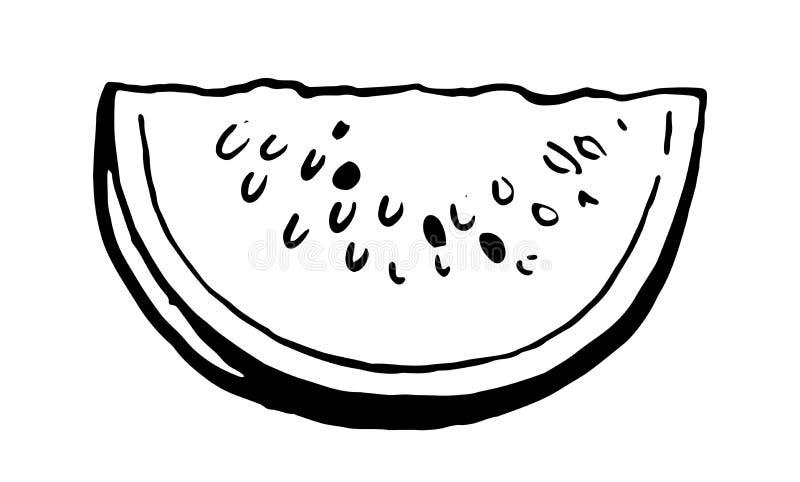 Watermelon Drawing Black White Stock Illustrations 1 194 Watermelon Drawing Black White Stock Illustrations Vectors Clipart Dreamstime