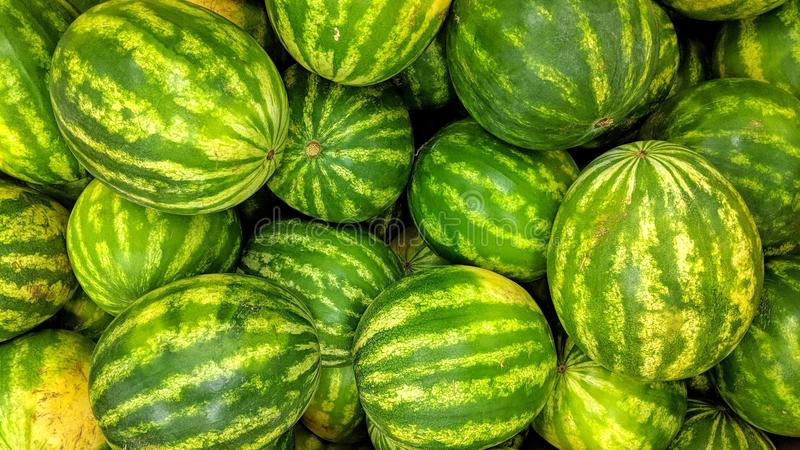 Watermelons in loose. Can be used as background or wallpaper and for other possibility or to modify to your taste stock illustration