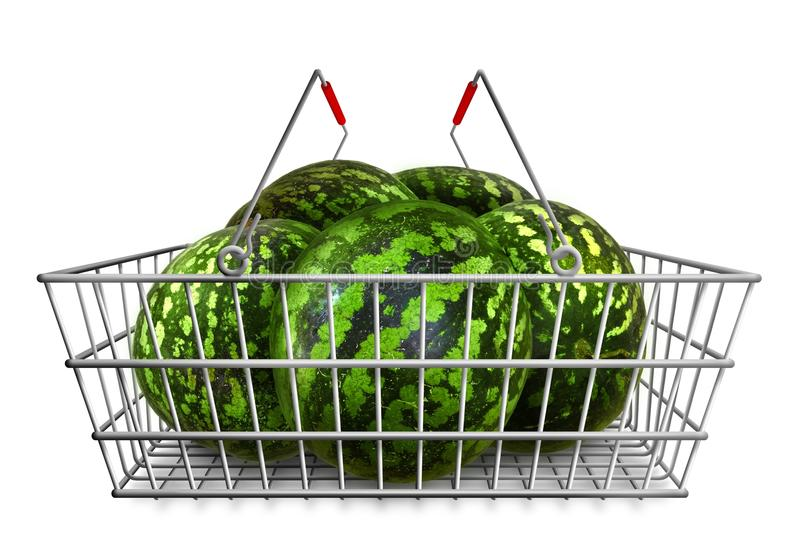 Watermelons in the shopping basket at white background isolated. Organic vegetarian food. Watermelons in the shopping basket at white background isolated royalty free stock photography