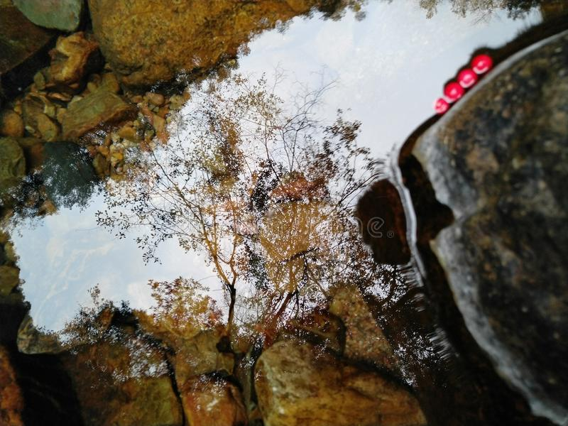 WaterMyPhoto fotografia stock libera da diritti