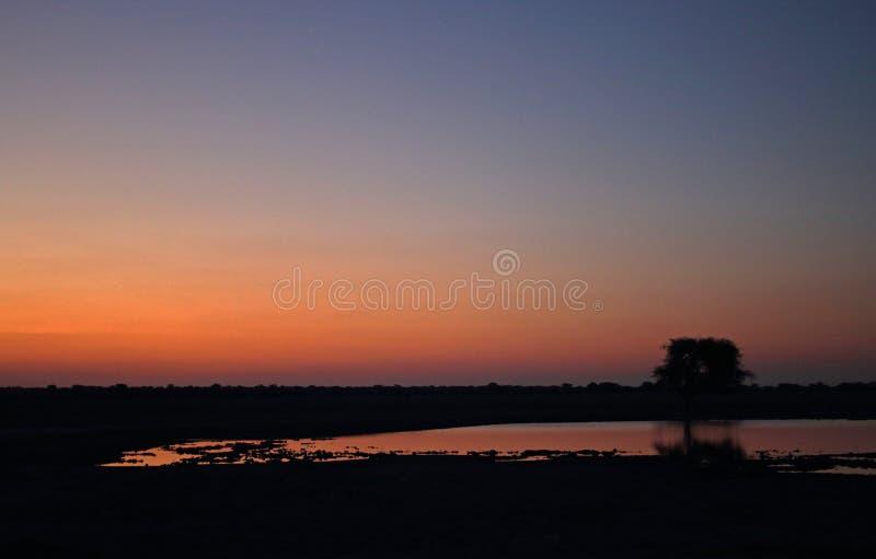 WATERpan die OP DIEPE NAGLOEIING VAN ZONSONDERGANG IN AFRIKAANS LANDSCHAP WIJZEN stock fotografie