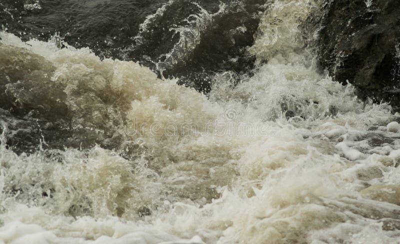 Waterplons in Rocky River stock fotografie