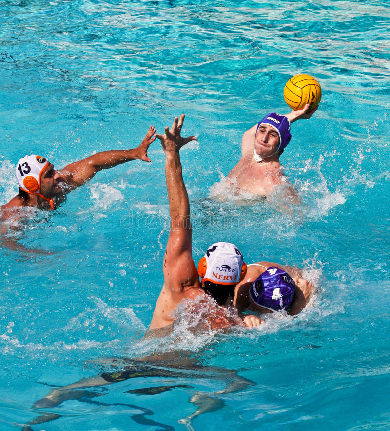 Free Waterpolo Stock Images - 10110794