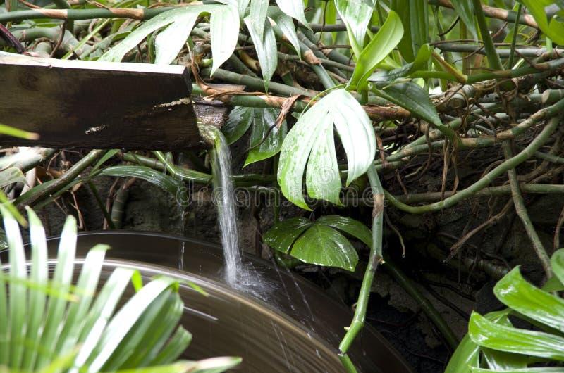 Waterrad tropische tuin royalty-vrije stock afbeeldingen