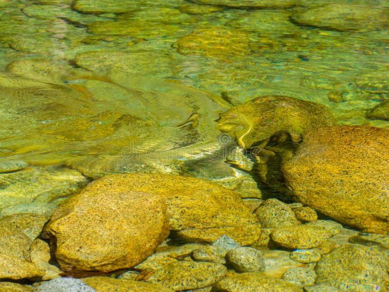 Waterrimpelingen in duidelijke, rotsachtige rivier stock foto