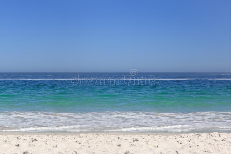 Waters edge at the beach vector illustration