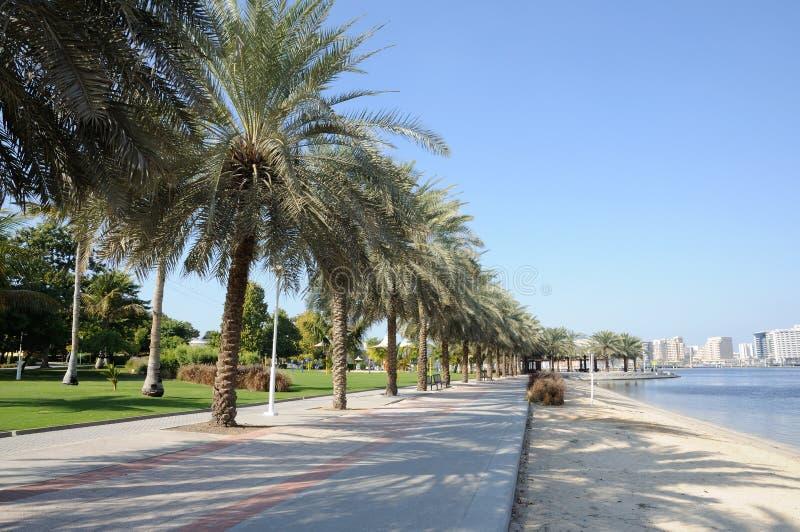 Waterside park at Dubai Creek royalty free stock photos