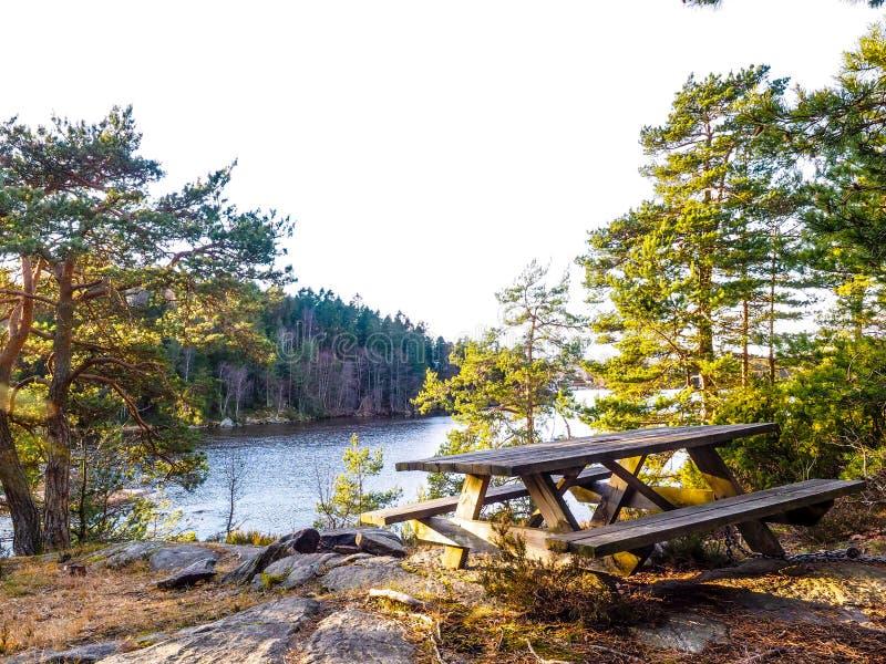 Download Waterside picnic bench stock image. Image of lake, natural - 105621489