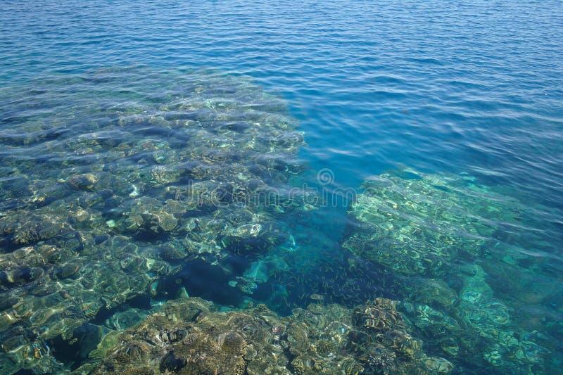 Waterspiegel boven koraal stock afbeelding