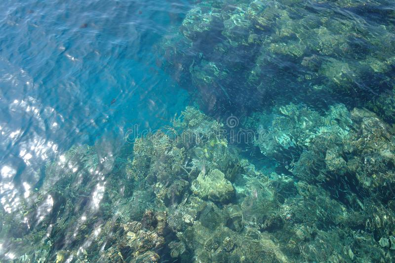 Waterspiegel boven koraal stock foto's
