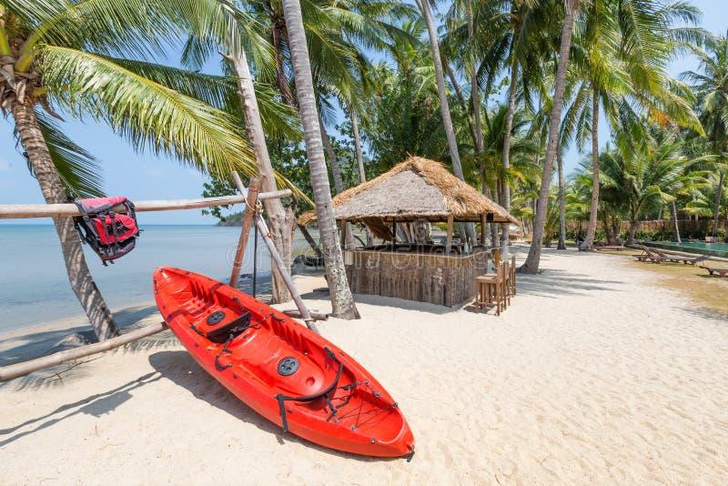 Watersport-Kajakboot unter einer Palme auf einem tropischen weißen Sand lizenzfreie stockfotos